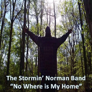 The Stormin' Norman Band 歌手頭像