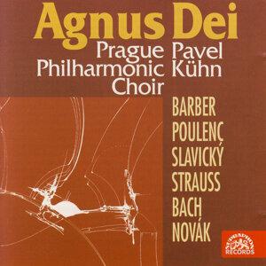 Prague Philharmonic Choir, Pavel Kühn 歌手頭像