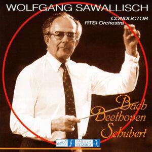 Wolfgang Sawallish 歌手頭像