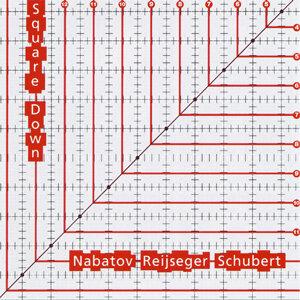 Simon Nabatov, Ernst Reijseger, Matthias Schubert 歌手頭像