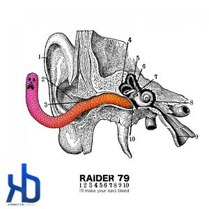 Raider 79 歌手頭像
