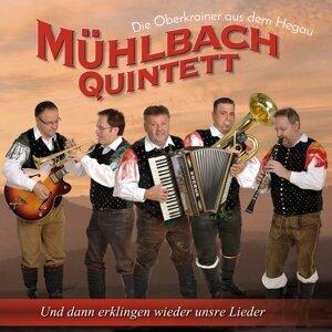 Mühlbach Quintett 歌手頭像