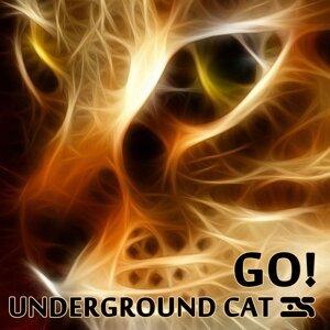 Underground Cat 歌手頭像