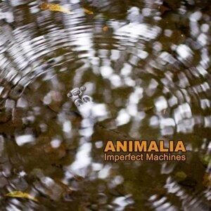 Imperfect Machines 歌手頭像