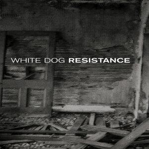 White Dog, og, White D, H, slayer 歌手頭像