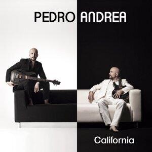 Pedro Andrea 歌手頭像