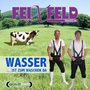 Feixfeld 歌手頭像
