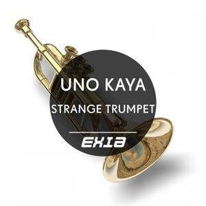 Uno Kaya 歌手頭像