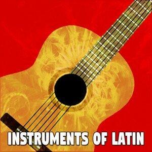 Instrumental 歌手頭像