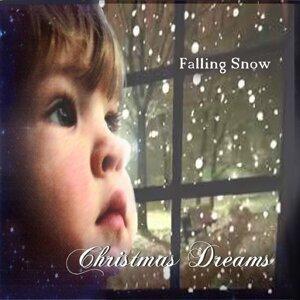 Falling Snow 歌手頭像