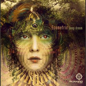 Ecometric 歌手頭像