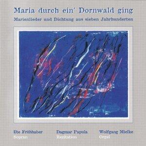 Dagmar Papula, Ute Frühhaber & Wolfgang Mielke 歌手頭像