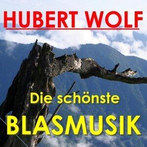 Hubert Wolf Und Seine Original Böhmerländer Musikanten 歌手頭像