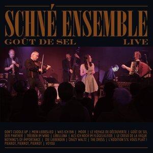 Schné Ensemble 歌手頭像