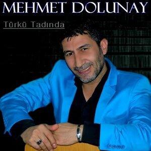 Mehmet Dolunay 歌手頭像