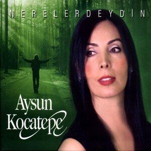 Aysun Kocatepe 歌手頭像