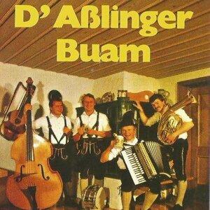 Asslinger Buam 歌手頭像
