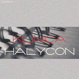 Halycon 歌手頭像