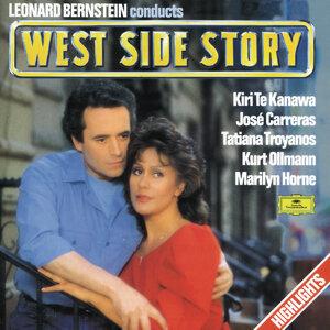 Leonard Bernstein Orchestra, Leonard Bernstein 歌手頭像