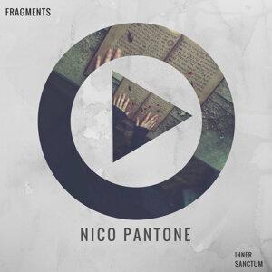 Nico Pantone 歌手頭像