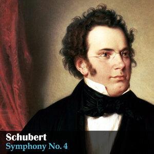 Bamberger Symphoniker, Hugo Steurer 歌手頭像