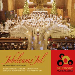 Brunnsbo Musikklasser 歌手頭像