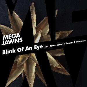 Mega Jawns 歌手頭像