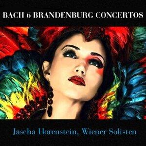 Jascha Horenstein, Wiener Solisten 歌手頭像