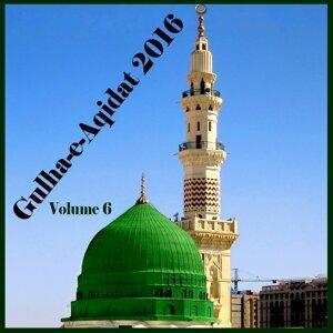 Hafiz M. Talha Sultani 歌手頭像