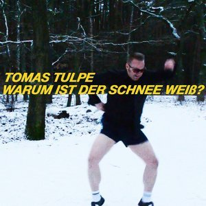 Tomas Tulpe 歌手頭像