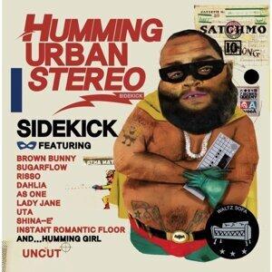 Humming Urban Stereo (허밍 어반 스테레오) 歌手頭像