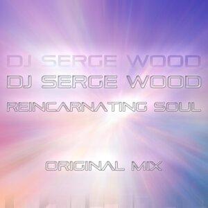 DJ Serge Wood 歌手頭像