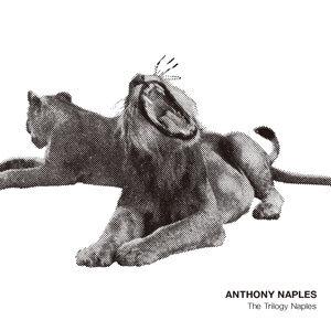Anthony Naples 歌手頭像