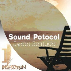 Sound Protocol