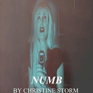 Christine Storm 歌手頭像