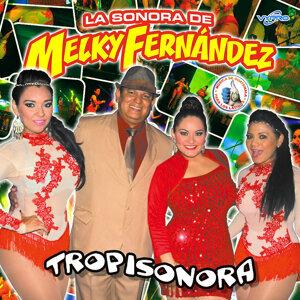 La Sonora de Melky Fernández 歌手頭像