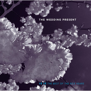 The Wedding Present 歌手頭像