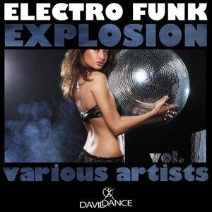 Electro Funk Machine, Funkylover, Kei Kohara, Boy Funktastic 歌手頭像