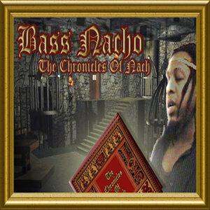 Austin Leeds feat. Bass Nacho 歌手頭像