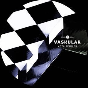 Vaskular 歌手頭像