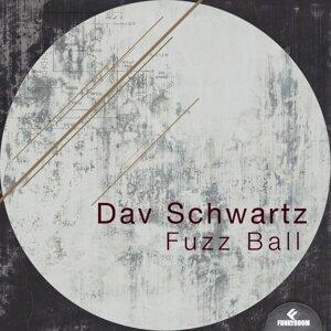 Dav Schwartz 歌手頭像