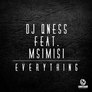 DJ Qness feat. Msimisi 歌手頭像