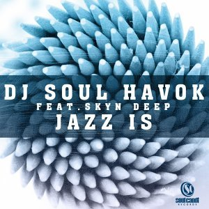 DJ Soul Havok feat. Skyn Deep 歌手頭像