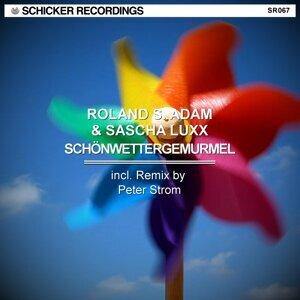 Roland S. Adam & Sascha Luxx 歌手頭像