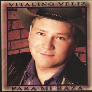 Vitalino Veliz 歌手頭像