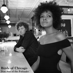Birds of Chicago 歌手頭像