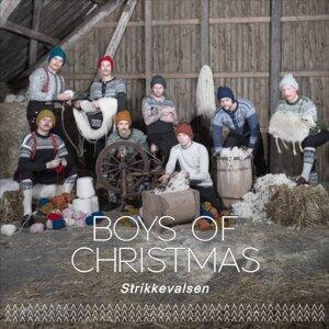 Boys of Christmas 歌手頭像