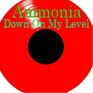 Ammonia 歌手頭像