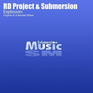 RD Project & Submersion 歌手頭像