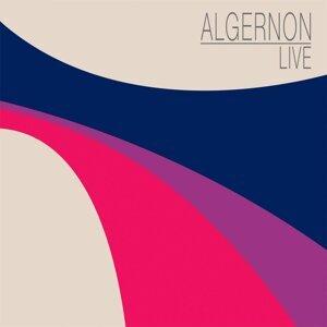 Algernon 歌手頭像